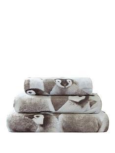 penguin-towel-range