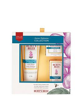 burts-bees-intense-hydration-setnbspamp-free-burts-bees-naturally-gifted-bloom-bundle-offer