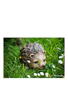 la-hacienda-woodland-hedgehognbspbr-br