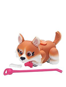 pet-parade-single-puppy-pack-corgi