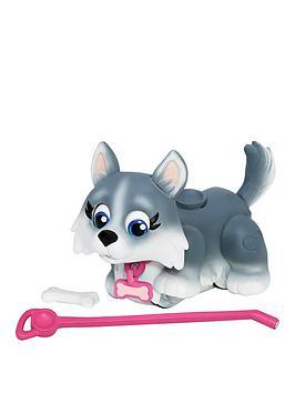 pet-parade-single-puppy-pack-husky