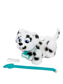 pet-parade-single-puppy-pack-dalmatian