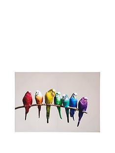 graham-brown-colourful-budgies-on-a-branch