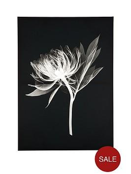 graham-brown-floral-silhouette-canvas