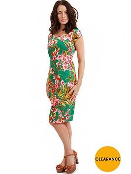 joe-browns-parisian-spring-dress
