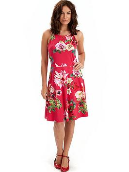 joe-browns-dragonfly-dress