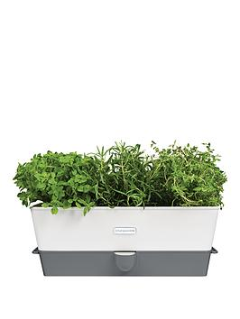 cole-mason-cole-amp-mason-self-watering-herb-keeper-triple