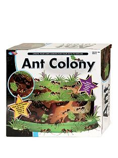 ant-colony