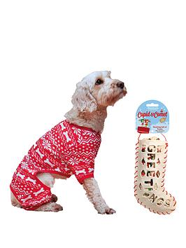 cupid-comet-medium-festive-pyjamas-amp-rawhide-stocking