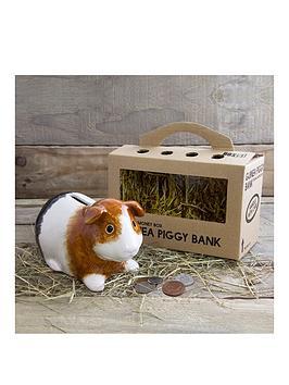 guinea-piggy-bank