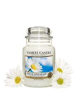 yankee-candle-love-me-love-me-not-large-jar