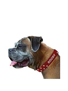 personalised-polka-dog-collar