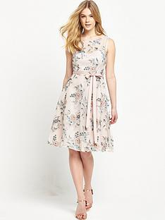phase-eight-prudence-dress