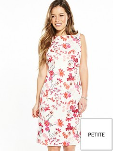 wallis-petite-floral-shift-dress