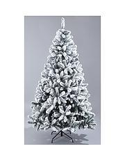 Christmas Decorations | Home & Garden | Littlewoods Ireland