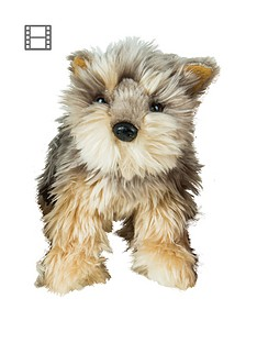 snuggle-pets-my-puppy-parade-pet-tanner-the-yorkie