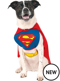 superman-dog-costume-super-man