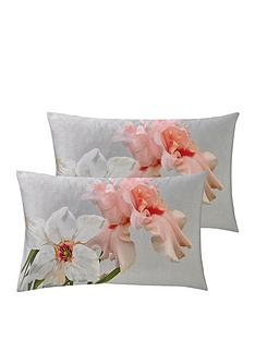 ted-baker-chatsworth-bloom-cotton-sateen-220-thread-count-housewife-pillowcases-pair