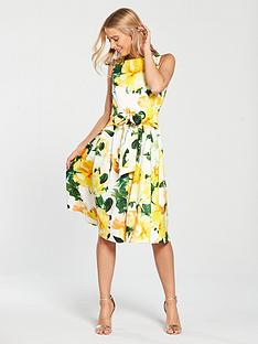 coast-harrison-printed-cotton-midi-dress