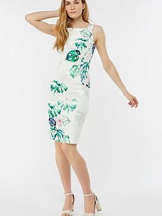 monsoon-ariannanbspshift-dress-botanical-print