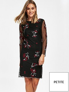 wallis-floral-embroiderednbspdobby-lace-dress-black