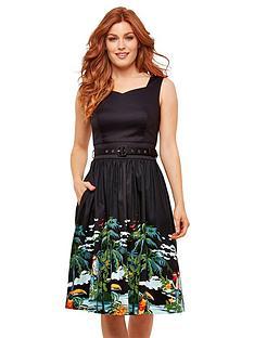 joe-browns-painted-birdy-dress
