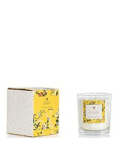 oasis-home-leighton-vetiver-and-iris-boxed-candle