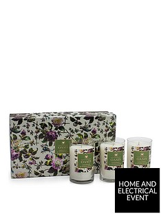 oasis-home-renaissance-rose-gardenia-and-sandalwood-set-of-3-candles