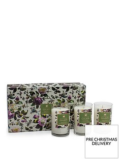 oasis-home-renaissance-rose-gardenia-and-sandalwood-set-of-3-candles