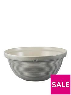mason-cash-william-mason-29-cm-mixing-bowl
