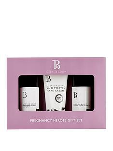 bloom-and-blossom-pregnancy-heroes-gift-set