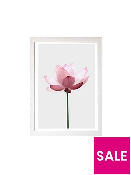 east-end-prints-lotus-by-sissi-and-seb-a3-wall-art