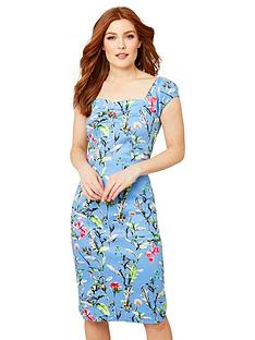 joe-browns-vintage-floral-fitted-dress-blue-multi