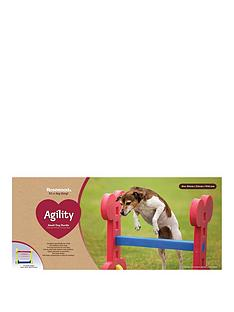 rosewood-agility-hurdle-outdoor-pet-activity