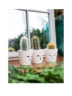 ivyline-set-of-3-cactuses-in-face-print-pots