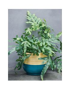 ivyline-bamboo-teal-planter