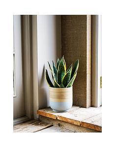 ivyline-bamboo-grey-planternbsp