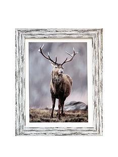 arthouse-highland-stag-framed-print