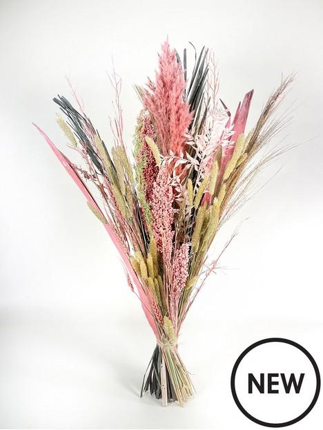 ixia-flowers-ixia-dried-flower-robin